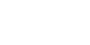 Libraries of Love Logo